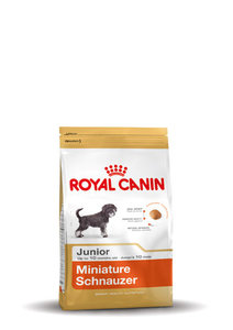 royal canin mini schnauzer junior huisdierspecialisten. Black Bedroom Furniture Sets. Home Design Ideas