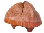 Hamsterhuis-kokosnoot-met-dak