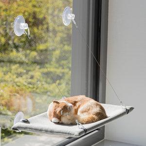Trixie Ligmat voor het venster