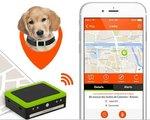 GPS-Tracker-Weenect