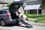 Beeztees-honden-loopplank