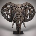 African-Elephant-Bust